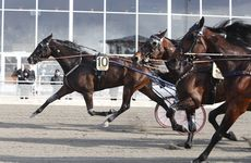 Eftersnack V75 Romme 16 april
