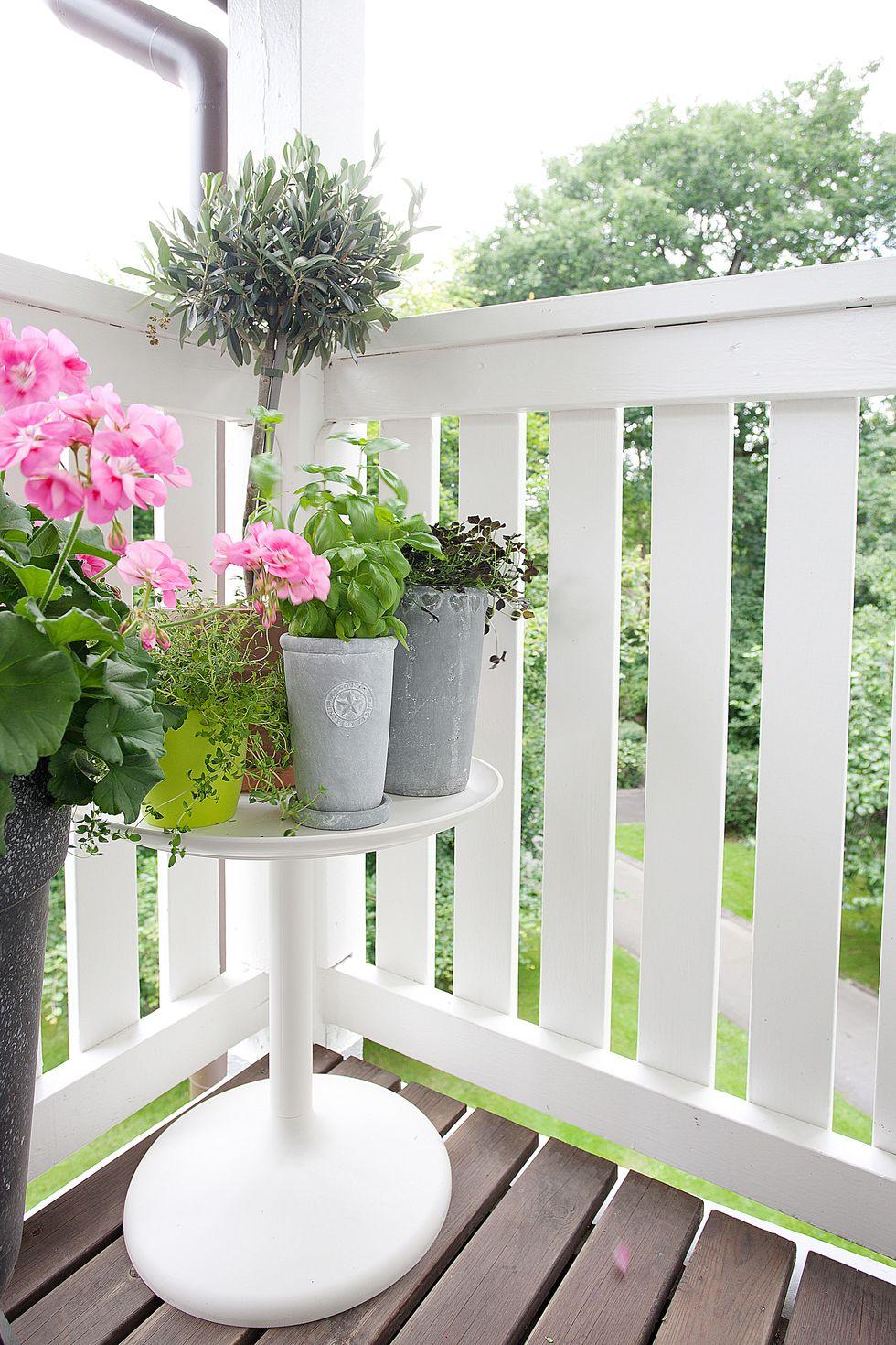 SÃ¥ här fÃ¥r du sommarens mysigaste balkong – Hemmets Journal