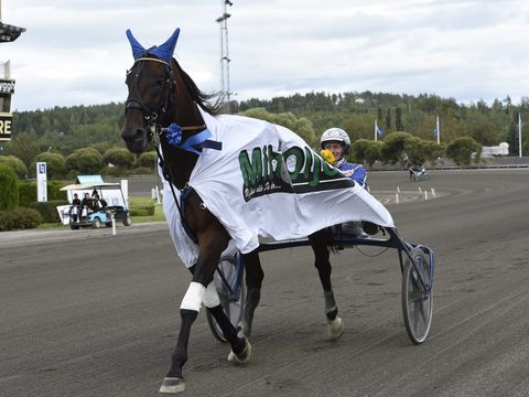 29 september 2018 Solvalla (V75)