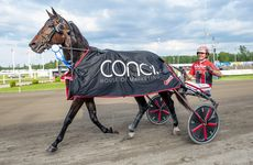 11 september 2019 Solvalla/Jägersro (V86)