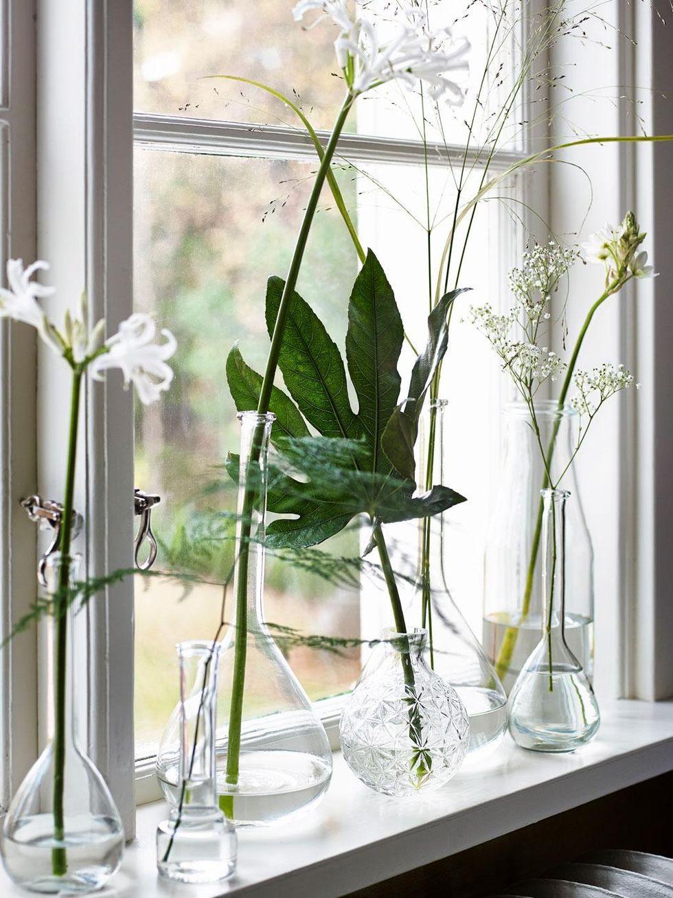 Grnt ljus nu tar vxterna plats i inredningen hus hem glasvaser med lng hals 75115 kr oscar och clothilde bakre vasen ensidig 29 kr ikea rund vas 89 kr hemtex reviewsmspy