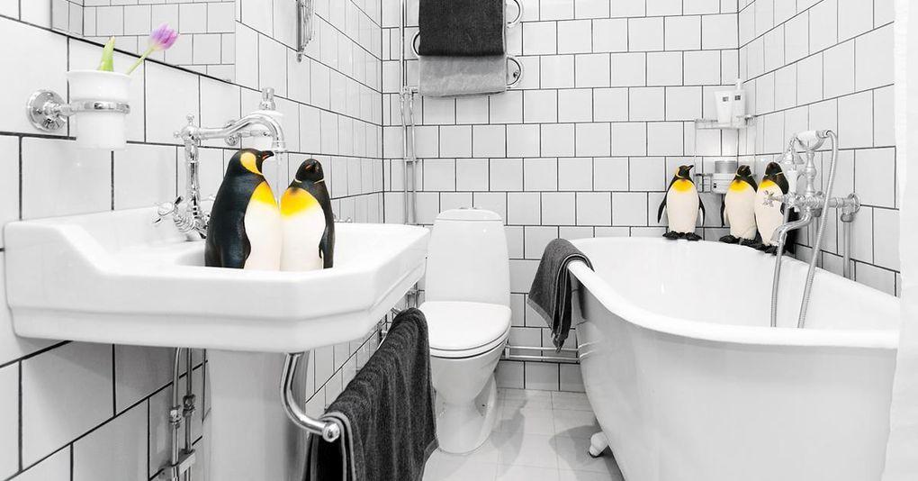 Här är lägenheten som ska säljas med hjälp av pingviner