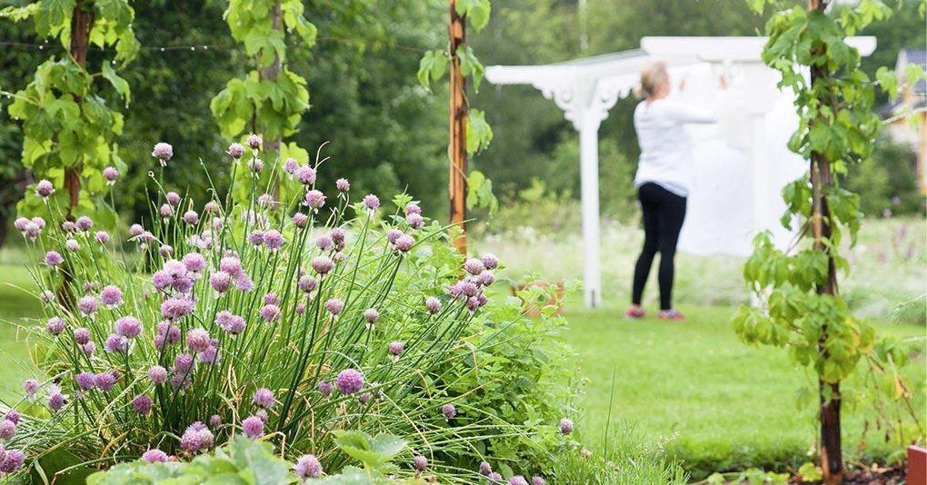 Gör det själv: Torkställningen som smyckar trädgården