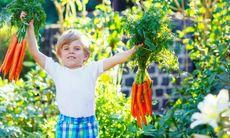 Låt barnen vara med i trädgården – 8 tips och råd