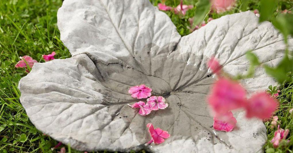 Så här gjuter du finaste fågelbadet med hjälp av blad