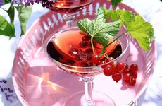 Mousserande gindrink med vinbär
