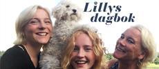 Lillys dagbok