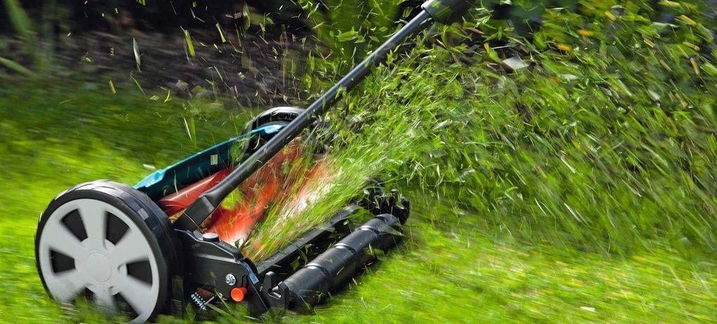 Jämförelse: Vilken gräsklippare ska man köpa?