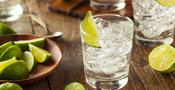 Så gör du Sveriges bästa Gin & Tonic