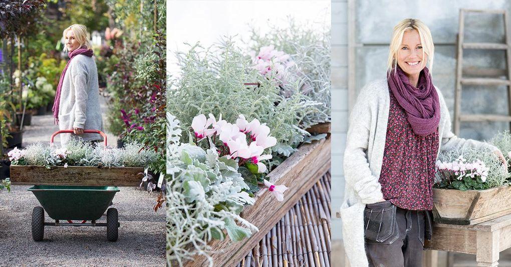 Victoria Skoglunds bästa tips – så lyckas du med höstplanteringen