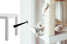 5 snygga Ikea-hacks till katten
