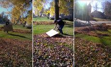 Superenkla knepet som rensar din gräsmatta från löv på sekunder