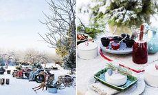 Så här smyckar du din trädgård inför vintern