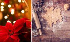 Testa dina kunskaper: Är du en riktig expert på jul?