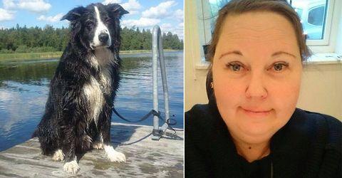 Hunden Diesel var livrädd för fyrverkerier – dog på nyårsafton