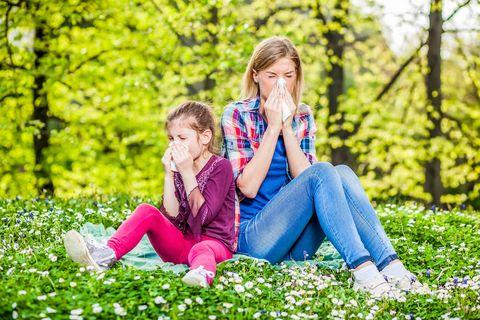 bota pollenallergi naturligt