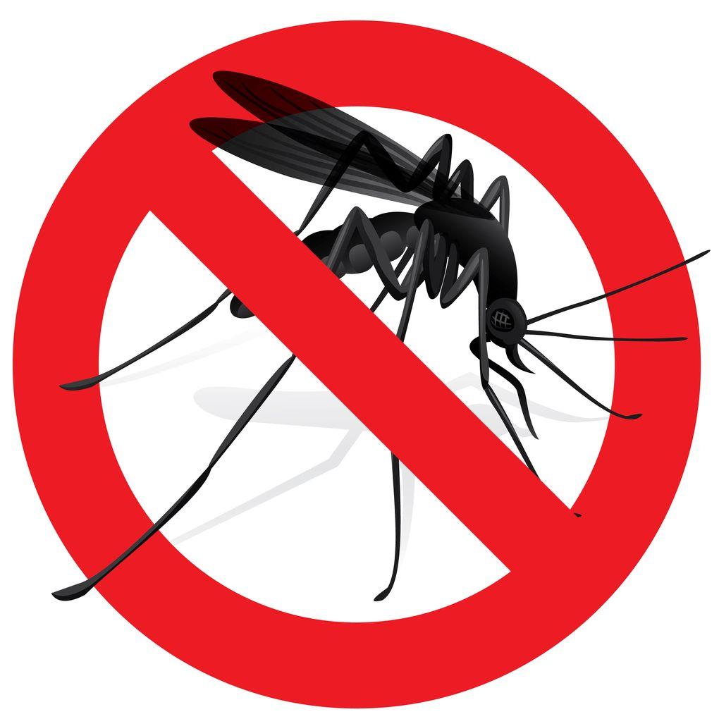 Nu ska myggen bort